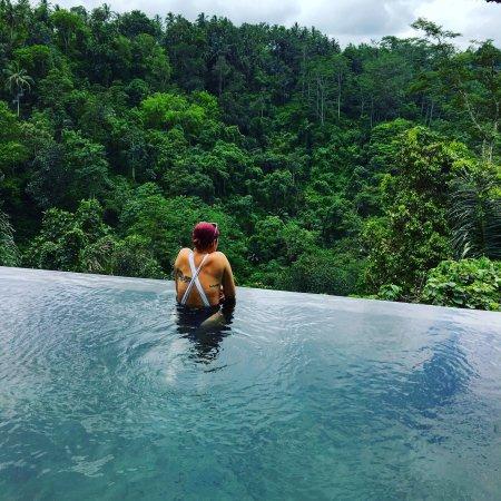 Hanging Gardens of Bali: photo0.jpg