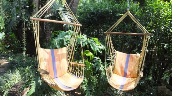 Sabie, South Africa: hanging chairs in garden