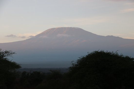 Tawi Lodge: Kilimanjaro