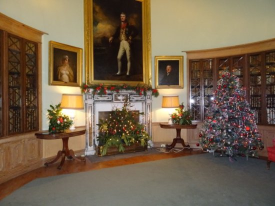 paxton house the library with its christmas decorations - Library Christmas Decorations