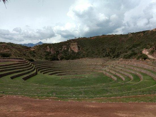 Maras, Perú: IMG-20171203-WA0033_large.jpg