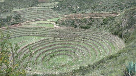 Maras, Perú: IMG_20171203_133916052_large.jpg