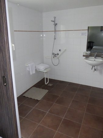 Inter Hôtel Le Cosy: SDB PMR