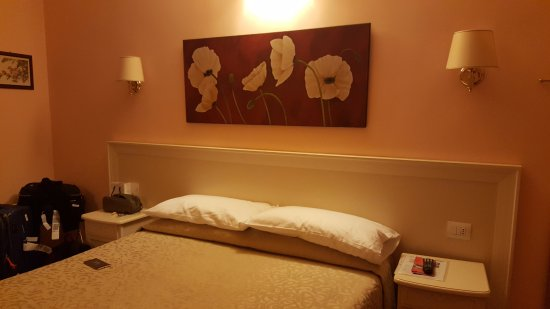 Adriana e Felice - Rooms in Rome: Double bed room