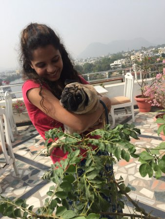 Terrace Khurra Detail Of Zostel Udaipur Updated 2017 Prices Hostel Reviews