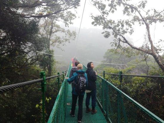 Guanacaste Nature Tours