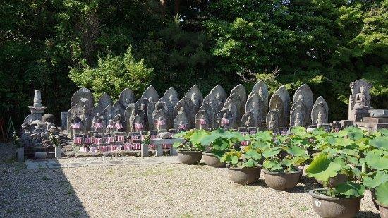 Kikoji Temple: 石仏群。
