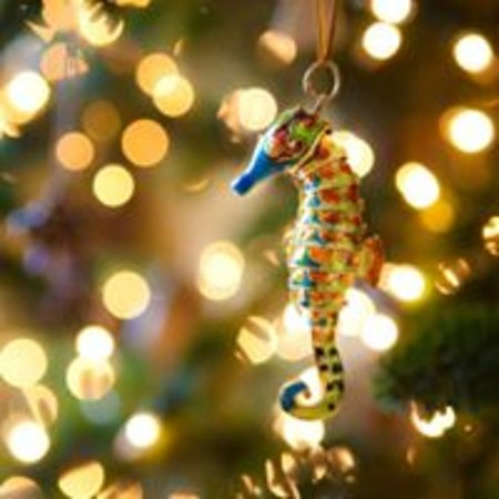 Scranton Seahorse Inn: Christmas time