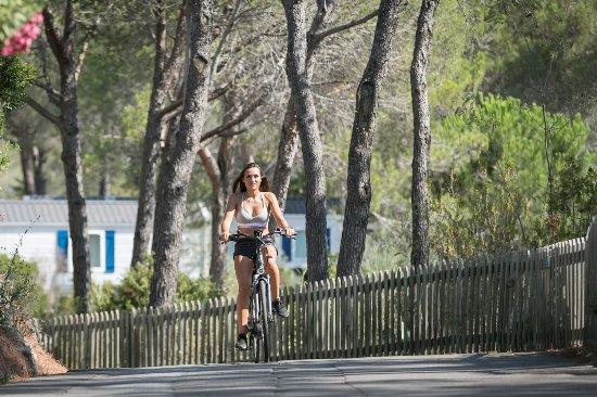 Holiday Green Resort & Spa : Locaiton de vélos électriques