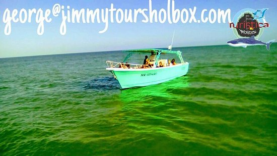 Holbox Island, Mexico: Best tours obviously have to be done simply  in the best boats Fishing and snorkeling  4 points