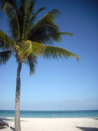 Secrets Maroma Beach Riviera Cancun Photo