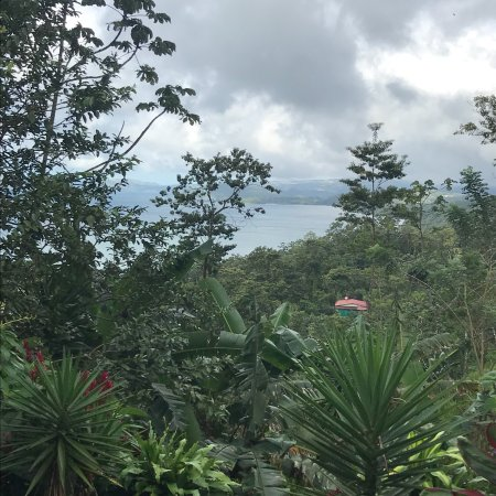 Ceiba Tree Lodge: photo0.jpg