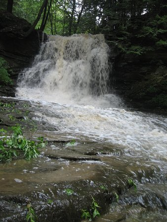 Seven Sisters Bed and Breakfast at McEwen Falls: 20 foot waterfall directly behind bed and breakfast.