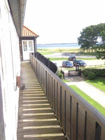 Molskroen: View overlooking the shore