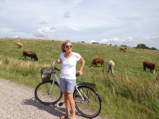 """Molskroen: We borrowed a couple of bikes and made a really nice, long ride up to and through the """"Mols Bjer"""