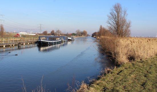 Schipluiden, Нидерланды: De ringvaart rond de polder