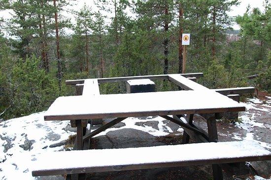 Korpilahti, فنلندا: At the top