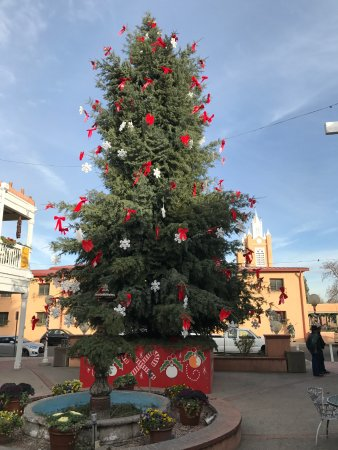 albuquerque old town christmas tree on the square - Old Christmas Tree