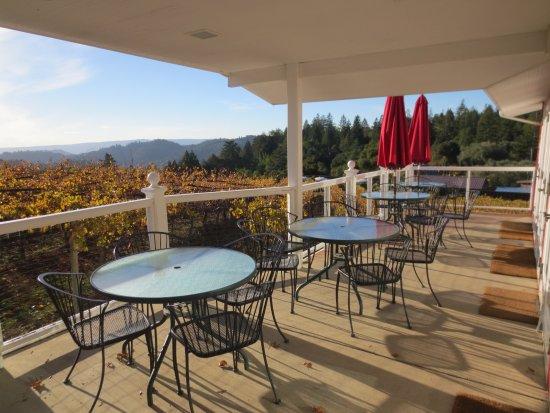 Los Gatos, CA: Beautiful views of the Santa Cruz mountains up here at Burrell School Vineyards.