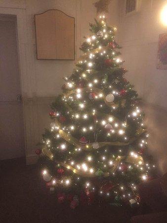 Ripley, UK: Christmas tree 2017