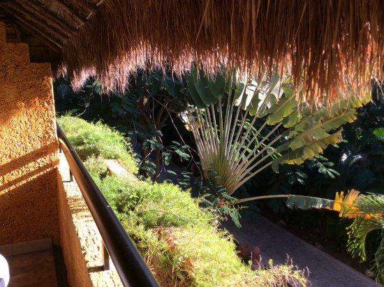 Priceline Trip Protection >> Foto de Hotel Iberostar Tucán, Playa del Carmen: Balcony ...