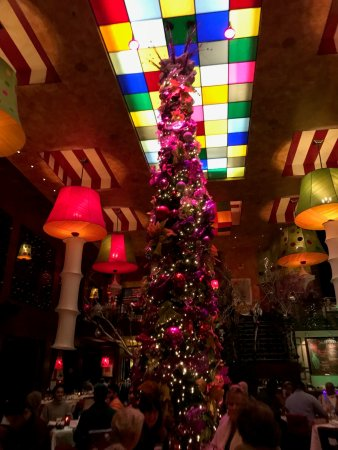 Carnivale Restaurant Chicago Reviews