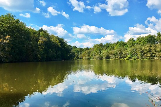 Marietta, GA: Beautiful view of lake from trail
