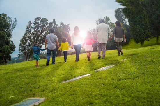 Machesney Park, إلينوي: Dignity Memorial
