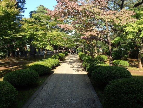 Gokokuji Temple: l'entrée du temple
