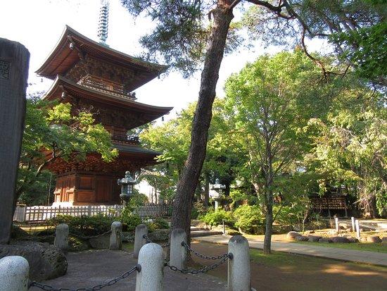Gokokuji Temple: la pagode