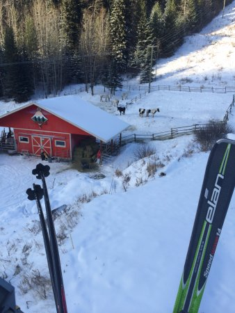 Kamloops, Canada: The stables from above (Burfield chair)
