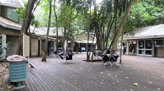 Green Island Resort: Dopo le ore 16 l'isola si presenta cosi'