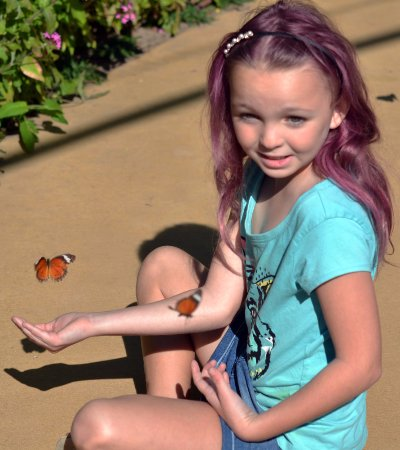 Bribie Island Butterfly House: My beautiful granddaughter waiting for a butterfly to land on her.