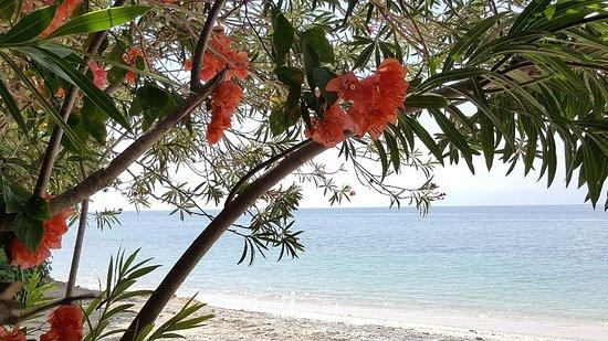 Cocotinos Sekotong, Boutique Beach Resort & Spa: 20160706_130623_large.jpg