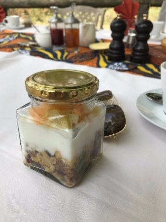 Manyeleti Game Reserve, South Africa: Yogurt & Granola, excellent plating