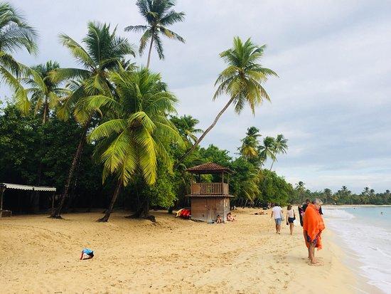 Sainte-Anne, Martinique: photo3.jpg