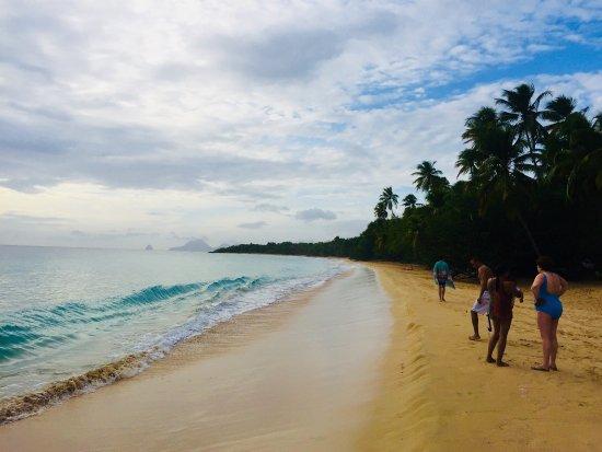 Sainte-Anne, Martinique: photo4.jpg