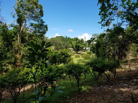 Tropical Agriculture Research Station: 20171206_113407_large.jpg