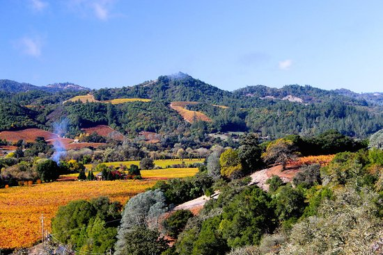 Healdsburg, Kaliforniya: Dry Creek Valley late fall