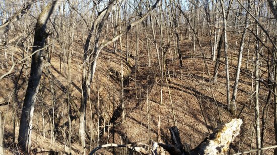 Sunderbruch Park Trail