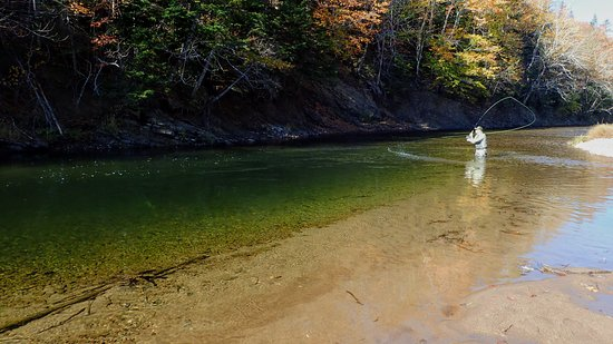 A Great Day Fishing: Middle river.