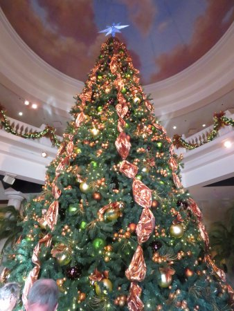 Branson, MO: The Christmas tree in the main room of the building