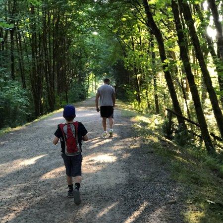 Lake Wilderness Arboretum: photo5.jpg