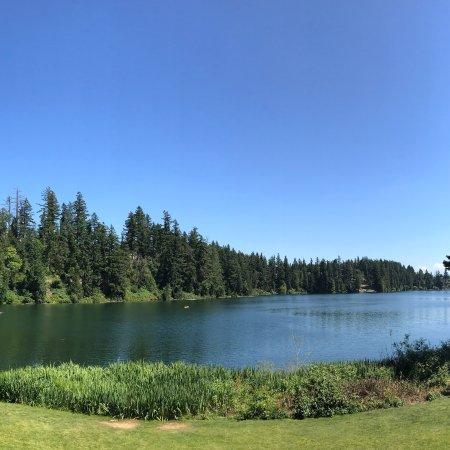 Lake Wilderness Arboretum: photo7.jpg