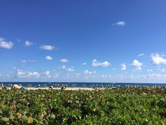 Singer Island, فلوريدا: photo0.jpg
