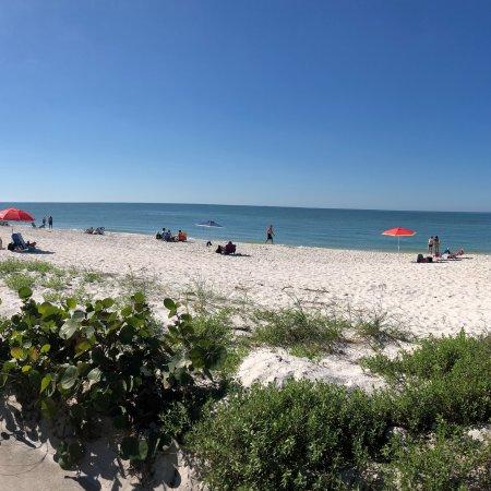 The Naples Beach Hotel & Golf Club照片