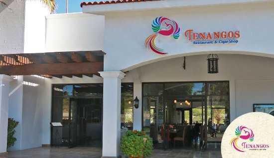 Tenangos Los Cabos San Jose Del Cabo Restaurant Reviews