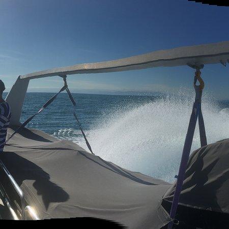 Whakatane, New Zealand: Boat trip to White Island