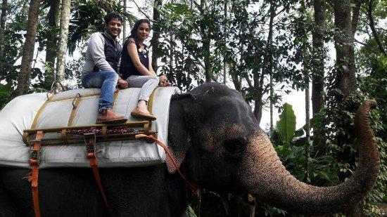 Aluva, India: Elephant Ride