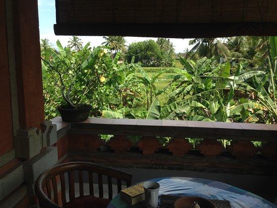 Nirwa Ubud Homestay Picture